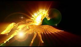 金色飞马视频图片