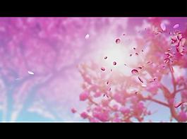 桃花背景視頻素材圖片