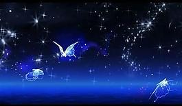 星空蝴蝶背景視頻素材圖片