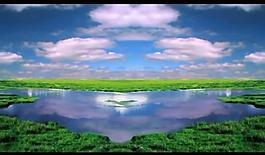 藍天白云草視頻素材圖片