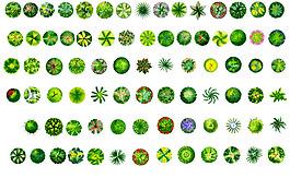 植物常见PS平面素材