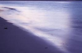 大海海灘圖片