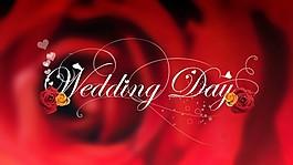 婚禮片頭視頻
