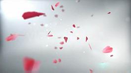 花瓣飄落AE模板婚禮視頻片頭下載