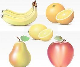 新鮮的水果矢量