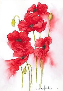 psd源文件渲染紅花罌粟花手繪花朵紅色
