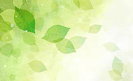 春夏綠葉psd分層素材圖片