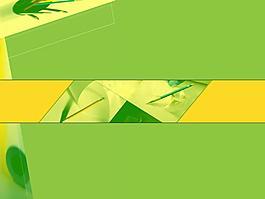 淡雅綠色PPT模板