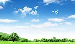 風景 藍天白云 綠草 森林圖片