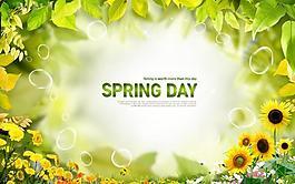 春天綠葉綠色背景素材圖片