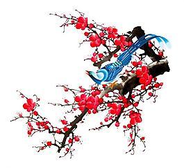 喜鵲與梅花圖片