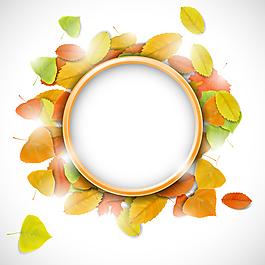 秋天树叶矢量图片