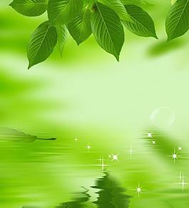 绿色海报 树叶图片