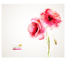 水彩矢量花