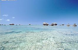 大海礁石圖片