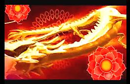 金龍飛舞背景視頻素材