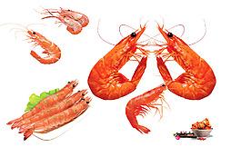 食物 大蝦