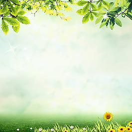 綠色春天背景素材