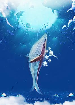 清新鲸鱼海报设计