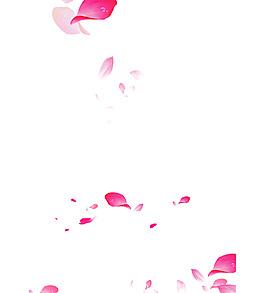 花瓣漂浮元素
