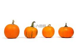 秋,装修,秋天