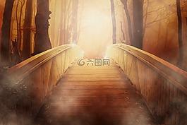 桥,金,光