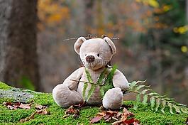 玩具熊,熊,兒童玩具