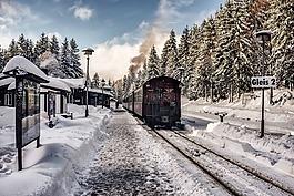 雪,冬天,圣诞节