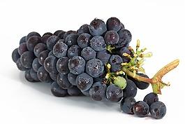 葡萄,束,水果