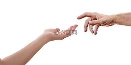 手,白,背景