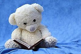 靜物,泰迪熊,白