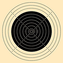 目标,步枪,300