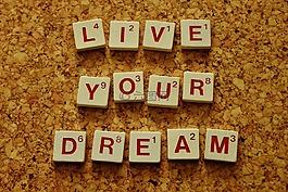 你的夢想,動機,激勵