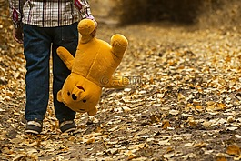 儿童,秋天,熊