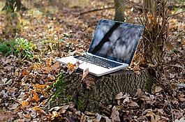 筆記本電腦,計算機,個人電腦