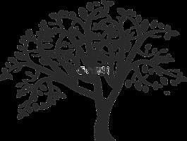 樹,家庭,自然