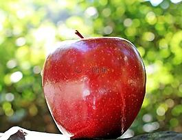 蘋果,紅蘋果,紅主任