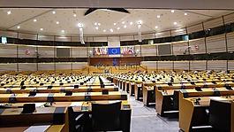 歐洲議會,歐洲,投票