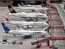 模型飞机,飞机,微缩奇境世界