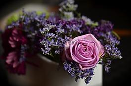 玫瑰,粉红色,插花