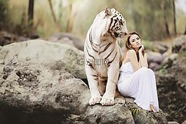 性质,动物世界,白色的孟加拉虎