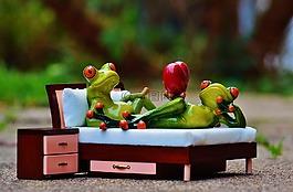 青蛙,爱,床上