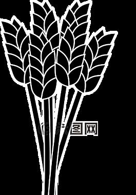 麥穗,束,糧食
