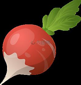 蘿卜,蔬菜,原