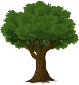 樹,森林,樹干