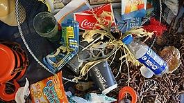 垃圾,海邊,海灘