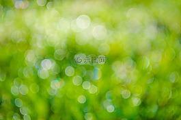綠色,背景,抽象