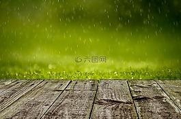 春,背景,綠色