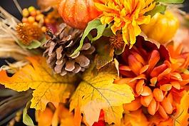 秋天的花,感恩节的花朵,秋天