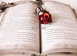書,閱讀,愛情故事